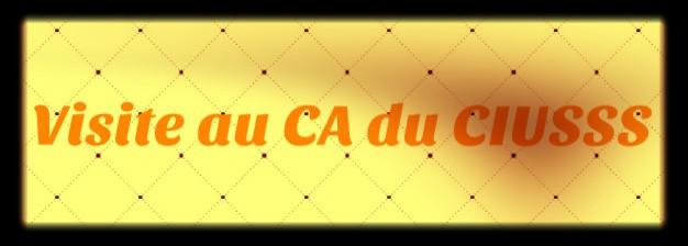 Visite au CA du CIUSSS