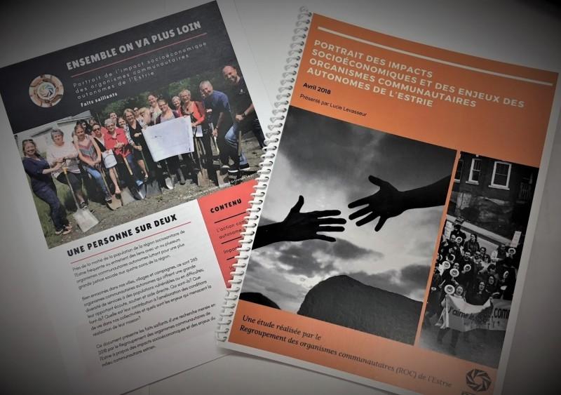 Portrait des impacts socio-économiques et des enjeux des organismes communautaires autonomes de l'Estrie
